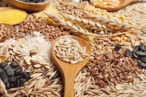 Obilniny - zdravé recepty pre malých i veľkých