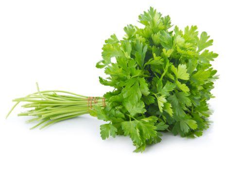 Bylinky - dobré koreninky pre detičky aj dospelých (2.)