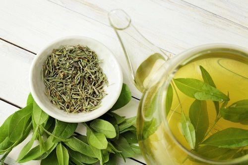 Zelený čaj a deti