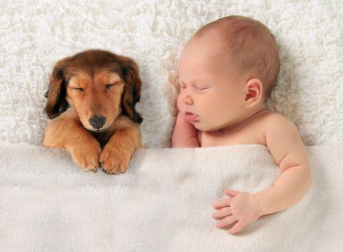 Mama psíčkarka a bábätko-havino