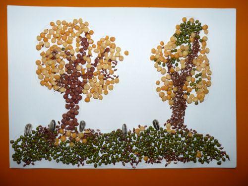 Obrázky zo semienok a strukovín