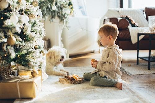 Ako vybrať pre dieťa ideálnu hračku pod stromček?
